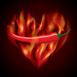 Rode Spaanse pepersbrand Stock Fotografie