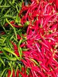 Rode Spaanse peperspeper Stock Afbeeldingen