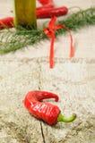 Rode Spaanse peperspeper Royalty-vrije Stock Afbeeldingen