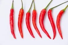 Rode Spaanse peperspeper Stock Foto's