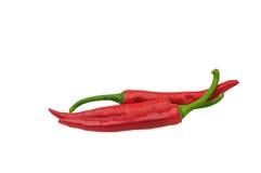 Rode Spaanse peperspeper die op wit wordt geïsoleerda Royalty-vrije Stock Fotografie