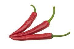 Rode Spaanse peperspeper die op wit wordt geïsoleerda Stock Afbeeldingen