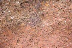 Rode steenmuur Royalty-vrije Stock Fotografie