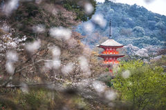 Rode tempel in Japan Royalty-vrije Stock Foto's