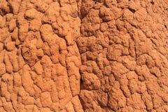 Rode termiethoop Royalty-vrije Stock Fotografie