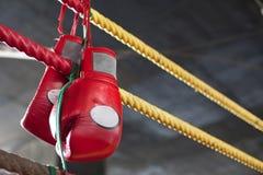 Rode Thaise bokshandschoenen Muay in het bestrijden van ring Royalty-vrije Stock Foto's