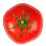 Rode tomaat. Royalty-vrije Stock Fotografie