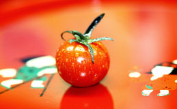 Rode tomaat royalty-vrije stock fotografie