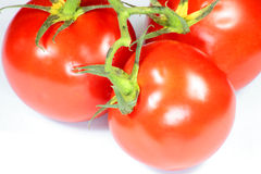 Rode tomaat stock afbeeldingen