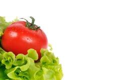 Rode tomaat met groene salade stock foto's