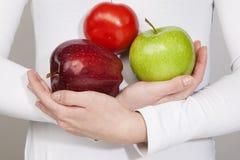 Rode tomaat, rode appel, de rode handen van de appleinvrouw Royalty-vrije Stock Foto