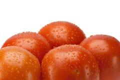 Rode tomaten Royalty-vrije Stock Fotografie