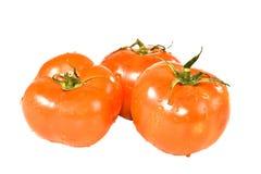 Rode tomaten. Stock Foto