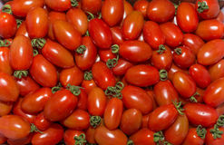 Rode tomaten royalty-vrije stock foto