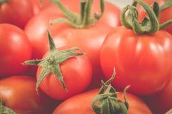 Rode tomaten in een blik op een achtergrond/achtergrond van rode tomaten met groene staarten royalty-vrije stock foto's