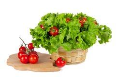 Rode tomaten in een mand met sla Royalty-vrije Stock Afbeelding