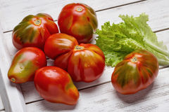 Rode tomaten en salade op witte houten raad Royalty-vrije Stock Afbeelding