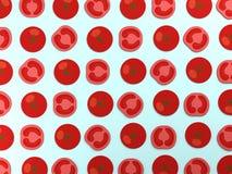 Rode tomaten op blauwe achtergrond Royalty-vrije Stock Fotografie