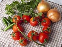 Rode tomaten op wijnstok met uien, Spaanse pepers en koriander Royalty-vrije Stock Foto's