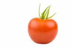 Rode Tomatoe Royalty-vrije Stock Afbeeldingen