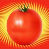 Rode Tomatoe met lijnenachtergrond Stock Foto