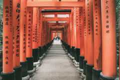 Rode Torii in Fushimi Inari, Kyoto, Japan Stock Foto