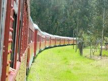 Rode trein Royalty-vrije Stock Foto