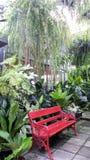 Rode tuinbank in varen groen huis in hete de zomerdag Stock Fotografie