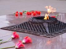 Rode tulpen dichtbij de eeuwige vlam in geheugen van slachtoffers in de grote Patriottische oorlog stock afbeelding