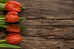 Rode tulpen op doorstaan hout met copyspace Stock Foto's