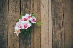 Rode tulpen op een antieke houten achtergrond Stock Afbeelding