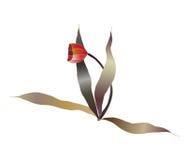 Rode tulpenbloem Stock Fotografie