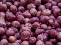 Rode uien bij de markt Royalty-vrije Stock Fotografie