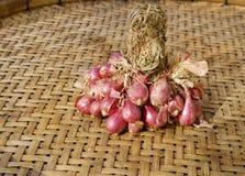 Rode uien, Thais Voedsel Royalty-vrije Stock Foto