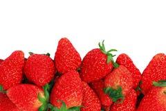 Rode verse aardbeien Stock Foto's