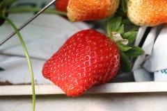 Rode verse aardbeien op het smakelijke gebied Royalty-vrije Stock Afbeeldingen