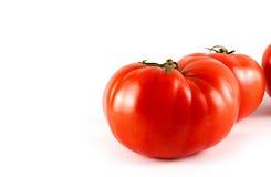 Rode verse tomaat Royalty-vrije Stock Foto