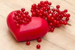 Rode viburnum en abstract hart Stock Foto