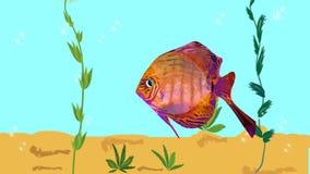 Rode vissen die in aquarium met groene installaties drijven, luchtbellen Geanimeerde illustratie stock illustratie