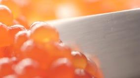 Rode vissenembryo's in de delicatesse verse rode kaviaar Rijpe zaden van granaatappel stock footage