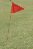 Rode vlagopwinding in wind Stock Fotografie