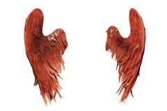 Rode vleugels die op wit worden geïsoleerdb Royalty-vrije Stock Afbeeldingen