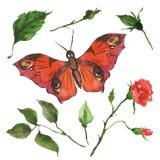 Rode vlinder en bloemen Royalty-vrije Stock Afbeeldingen