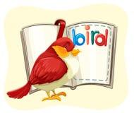 Rode vogel en geopend boek stock illustratie