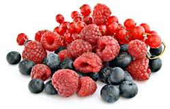 Rode vruchten Royalty-vrije Stock Foto