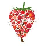 Rode vruchten Stock Afbeelding