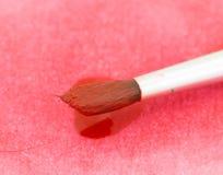 Rode waterverfverf op varkenshaar Royalty-vrije Stock Foto