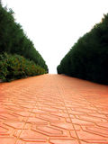 Rode Weg Royalty-vrije Stock Fotografie