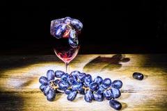 Rode wijn en druif Stock Afbeeldingen