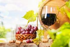 Rode wijn en druiven royalty-vrije stock foto